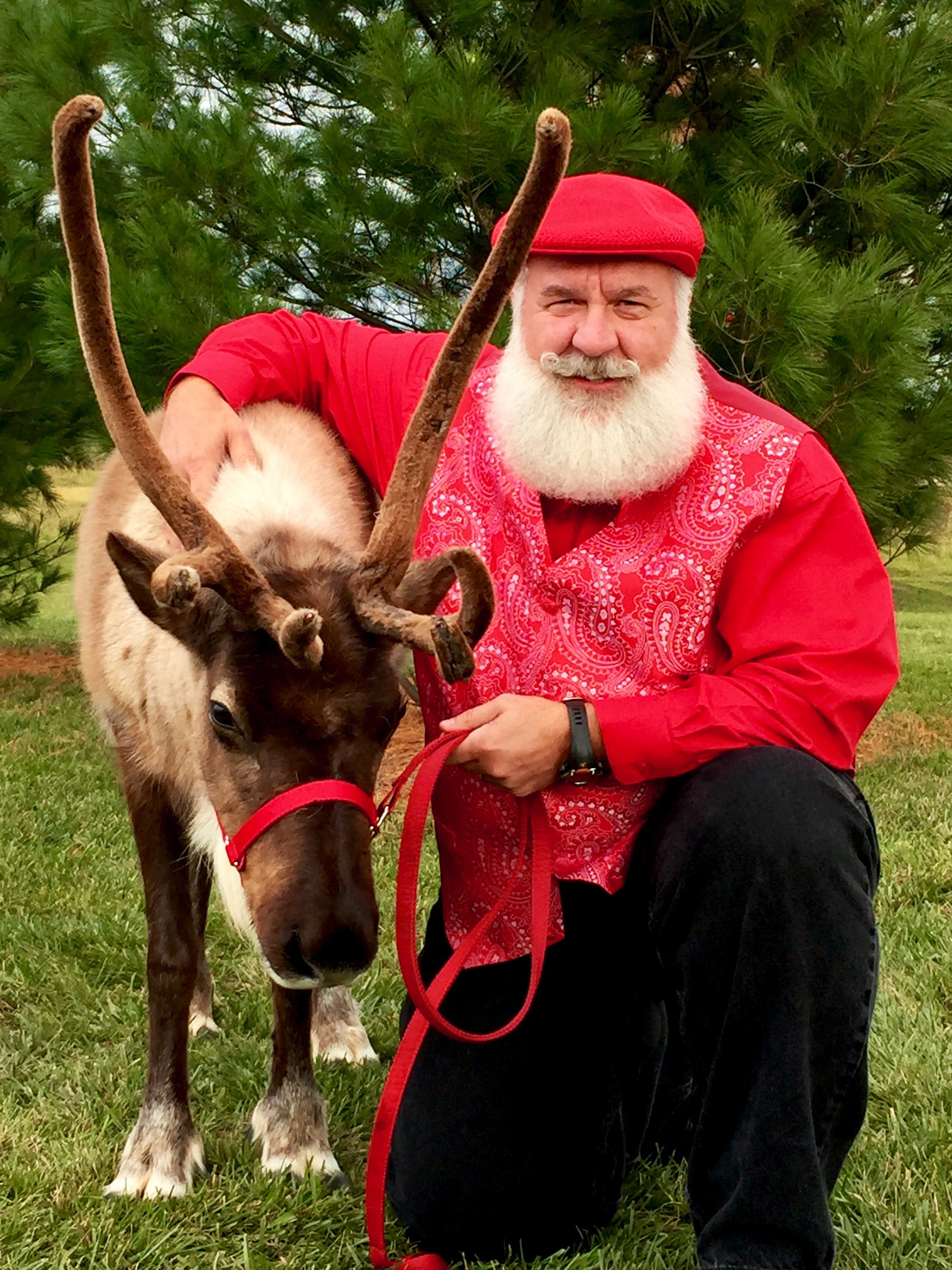 Nick Cardello Reindeer